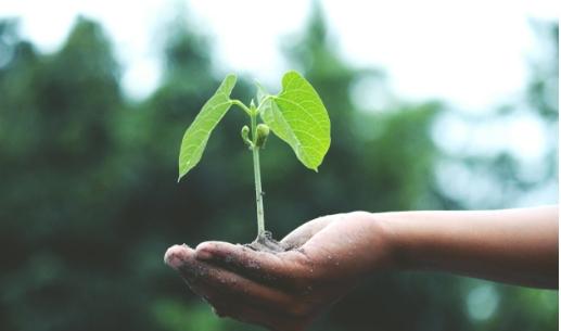 Zdravé a nádherné vlasy ve znamení udržitelnosti